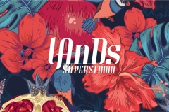 tands-3